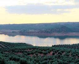 La reserva hidráulica española se encuentra al 58,4% de su capacidad y la del Guadalquivir casi al 55