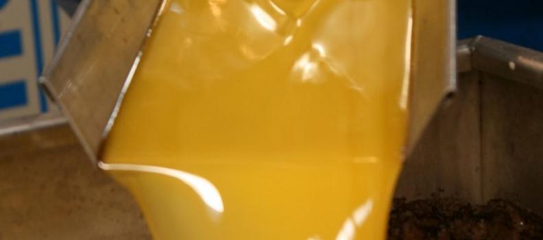 El precio medio del aceite de oliva virgen extra alcanza los tres euros el kilo en el mercado de origen