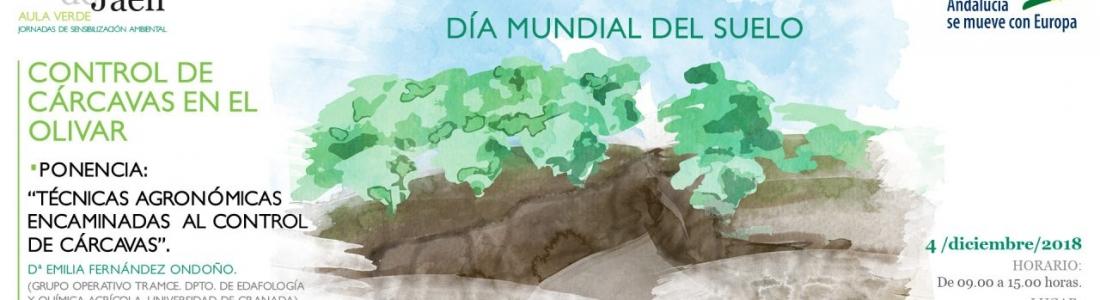 La UJA organiza una jornada de concienciación sobre las causas y consecuencias de la erosión en el olivar