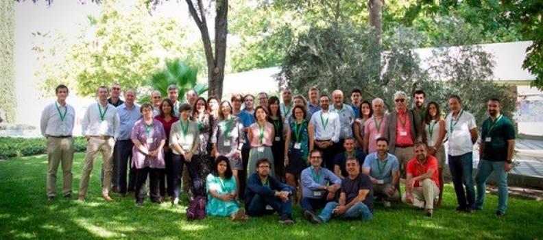 El proyecto europeo «Sustainolive» analiza las debilidades, fortalezas, oportunidades y amenazas de los olivares y almazaras de los países que participan en el mismo