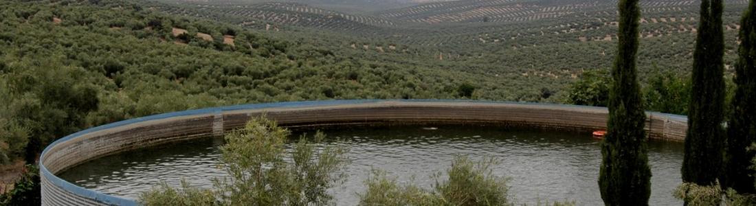 La UPA reclama la puesta en marcha del regadío de 3.500 hectáreas de olivar en la presa de Siles