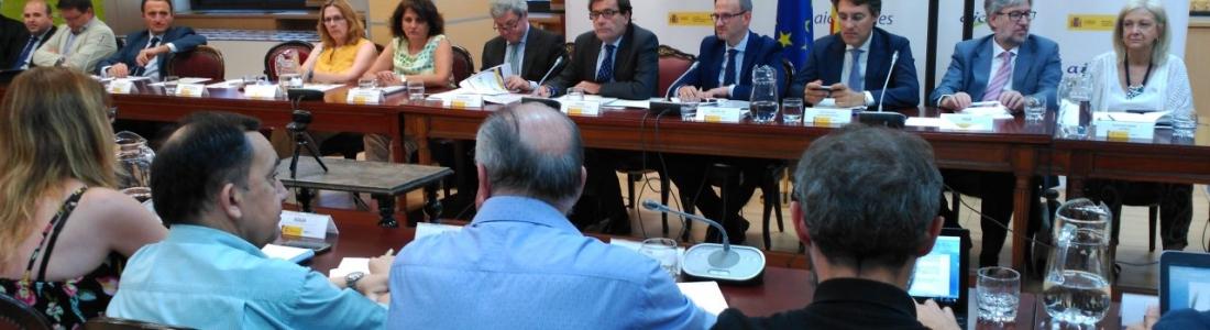 El Consejo Asesor de la AICA analiza la memoria anual de actividades y las acciones desarrolladas en el primer semestre