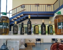 Las ventas de aceites de oliva envasado de las empresas de Anierac alcanzaron los 32 millones de litros en octubre