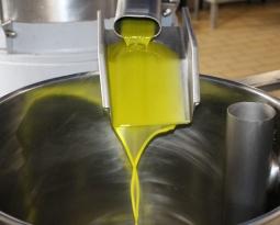 Andalucía plantea al Consultivo apostar por un mecanismo obligatorio de retirada de aceite de oliva a partir de la próxima campaña