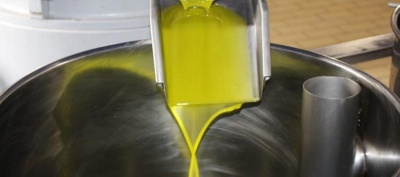 Aprobada por unanimidad una iniciativa de Ciudadanos por la que se insta al Gobierno central a que trabaje en la eliminación de los aranceles al aceite de oliva