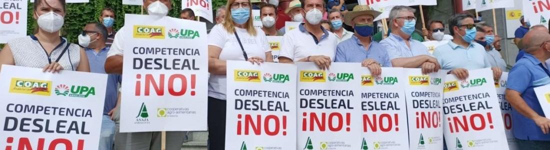 Los olivareros de la Sierra de Segura están llamados este viernes a una caravana protesta de vehículos para exigir «precios justos» para el aceite de oliva