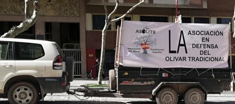 Asolite convoca una marcha de vehículos en Jaén por la situación de crisis en el sector primario y para reclamar precios dignos