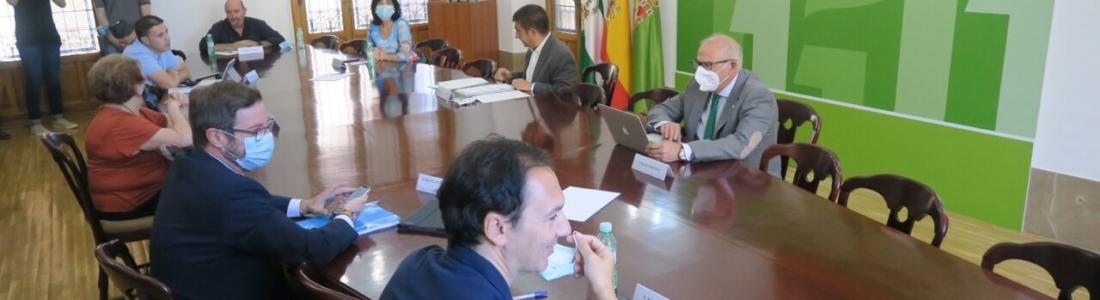 El CES de la provincia de Jaén propone planificar bien y adelantar la próxima campaña oleícola