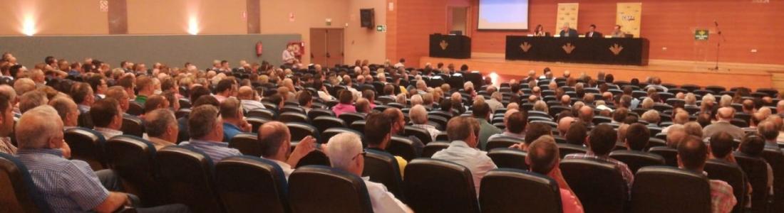 COAG celebra en Expoliva una jornada para analizar estrategias frente a la crisis de precios del aceite de oliva