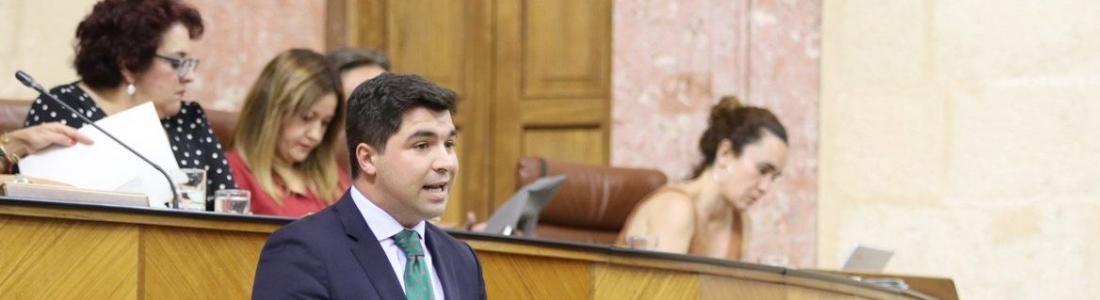 Ciudadanos saca adelante por unanimidad su proposición no de ley en defensa del aceite de oliva