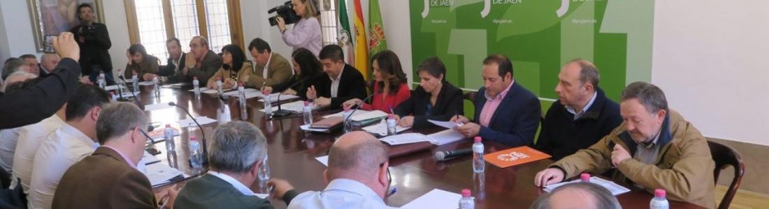 El Consejo Provincial del Aceite de Oliva estudia medidas para revertir el descenso del precio de este producto