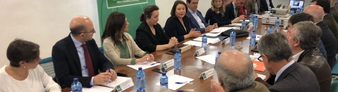 El sector acuerda trabajar de forma conjunta con las administraciones ante la crisis de precios del aceite de oliva en origen