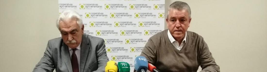 """Cooperativas Agro-alimentarias de Jaén denuncia «el engaño de la UE al sector productor por la medida cicatera"""" de almacenamiento privado de aceite de oliva"""