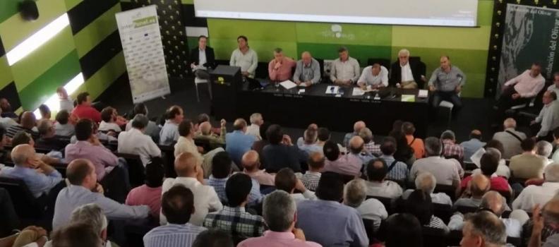 El Consejo Sectorial de Cooperativas Agro-alimentarias de Andalucía se reúne en el Museo Terra Oleum en vísperas de la concentración de mañana