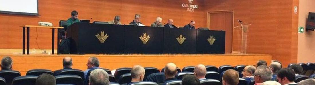 Cooperativas Agro-alimentarias analiza el aforo de la Junta, del que no espera que en Andalucía se superen las 900.000 toneladas
