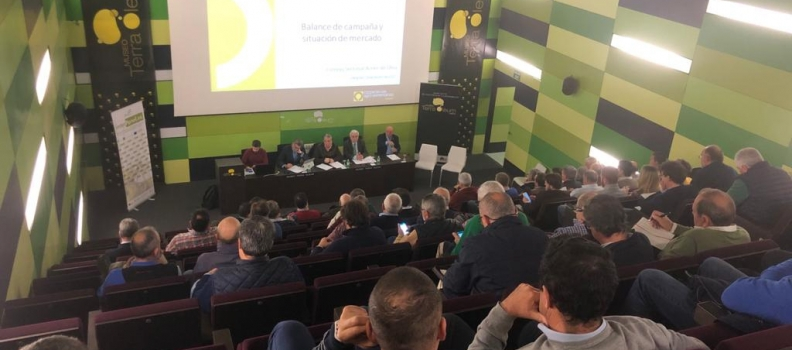 Cooperativas Agro-alimentarias de Andalucía pide un último esfuerzo a las cooperativas oleícolas para lograr la retirada de un total de 200.000 toneladas