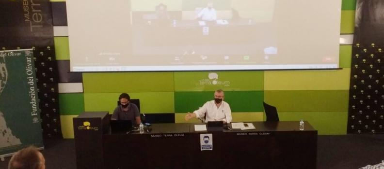 Las cooperativas olivareras rechazan la propuesta de    Real Decreto para la aplicación del artículo 167