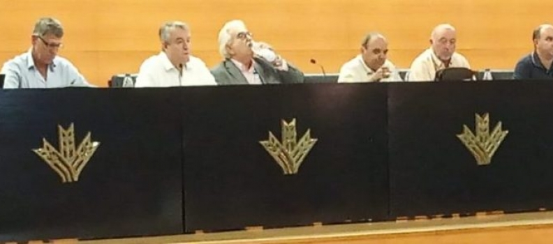 Cooperativas Agro-alimentarias de Andalucía defiende que «es momento de trabajar en las medidas planteadas y no de manifestaciones no consensuadas»