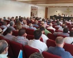Cooperativas prevé una reducción de aceite de oliva cercana al 50%