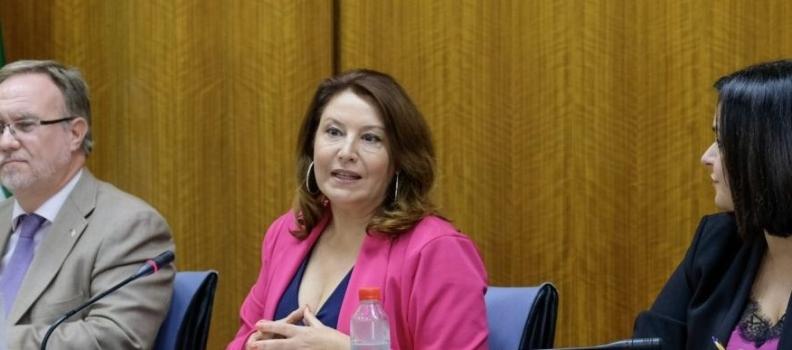 """Carmen Crespo destaca en el Parlamento que """"el 70 por ciento del gasto en el presupuesto de 2020 se destinará a inversión"""""""