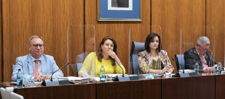 """Crespo llama a la """"unidad"""" por una PAC sin recortes y en defensa del sector agro andaluz"""