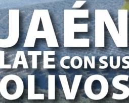 La Diputación de Jaén se suma a la celebración del Día Mundial del Olivo