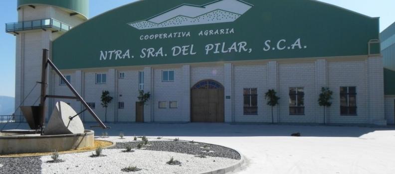 La coperativa El Pilar de Villacarrillo, la de mayor producción, y la SCA Sagrado Corazón de Jesús de Las Casillas se incorporan a la IGP Aceite de Jaén