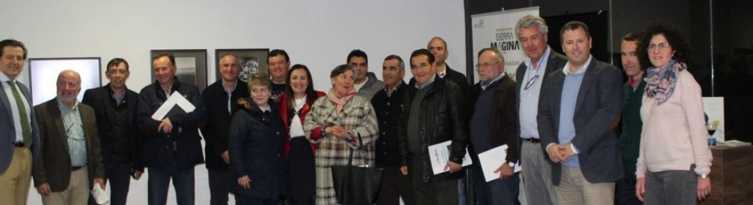 La sede del Consejo Regulador de la DO Sierra Mágina acoge la exposición «El reino del olivo», de Manny Rocca