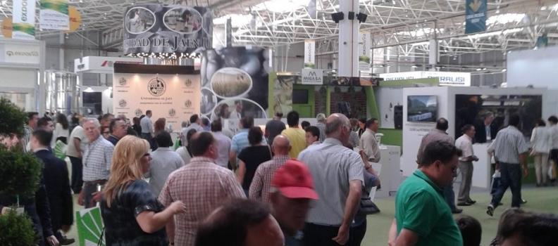 Expoliva cierra su mejor edición con unos 50.000 visitantes profesionales