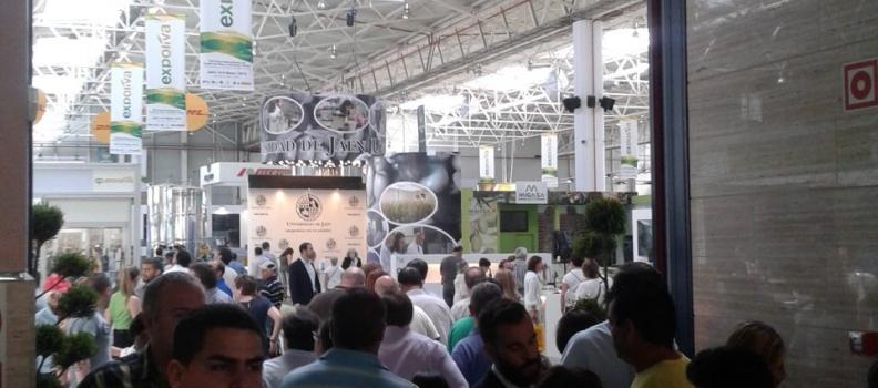 La cifra definitiva de visitantes a Expoliva roza los 49.000