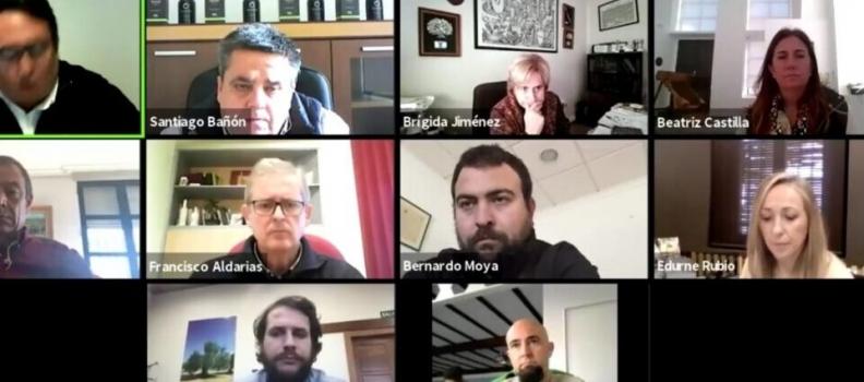 Concluye la Fiesta Virtual del Primer Aceite de Jaén con la promoción de los aceites tempranos y una veintena de actividades
