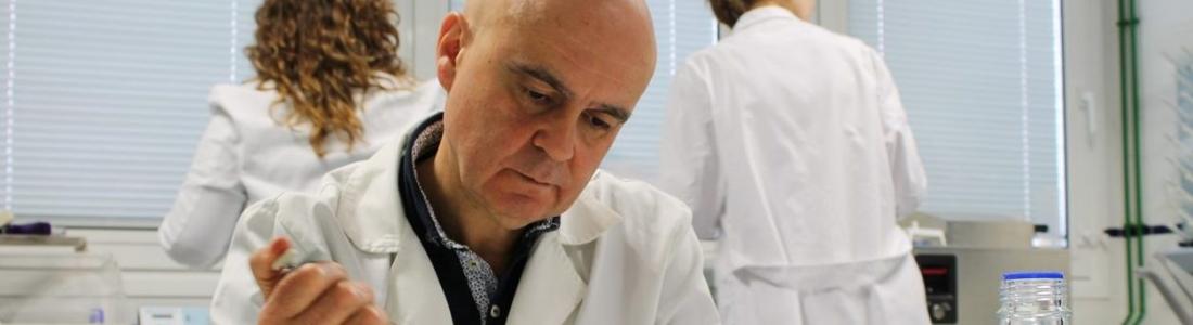 Investigadores de la UJA describen que un compuesto del aceite de oliva virgen favorece la cicatrización de las heridas
