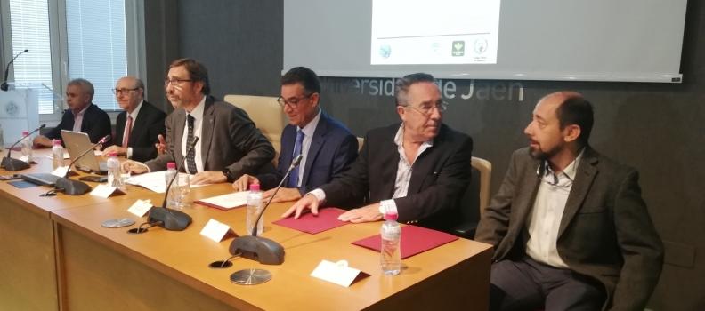 """El director del COI defiende el incremento de la calidad del aceite de oliva como """"regla"""" para que suban los precios"""
