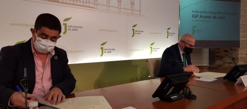 El Consejo Regulador de la IGP Aceite de Jaén aprueba las tarifas para sus tres registros y espera convocar las elecciones de sus órganos de gobierno en febrero o marzo