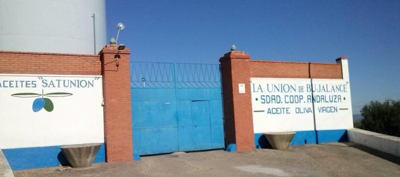 El Grupo Interóleo incorpora a la SCA La Unión de Bujalance, la primera cooperativa de Córdoba y de una provincia andaluza que no es Jaén