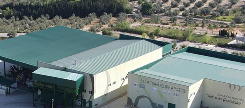 El Grupo Interóleo alcanza los 33 socios tras la incorporación de la cooperartiva San Felipe Apóstol de Baeza