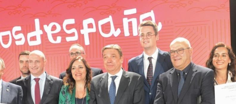 Trece almazaras y cooperativas de Jaén optan al Premio Alimentos de España Mejores AOVEs de esta campaña
