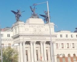 El Boletín Oficial del Estado publica hoy el Real Decreto-Ley 5/2020 de medidas urgentes en materia de agricultura y alimentación