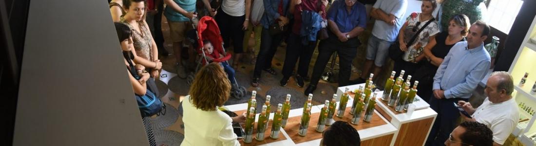 Decenas de turistas conocen en Úbeda la variedad frantoio de Oleícola Jaén