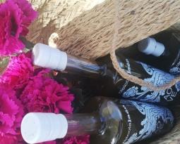 Tiempo de cosecha temprana, la excelencia de los zumos de aceituna
