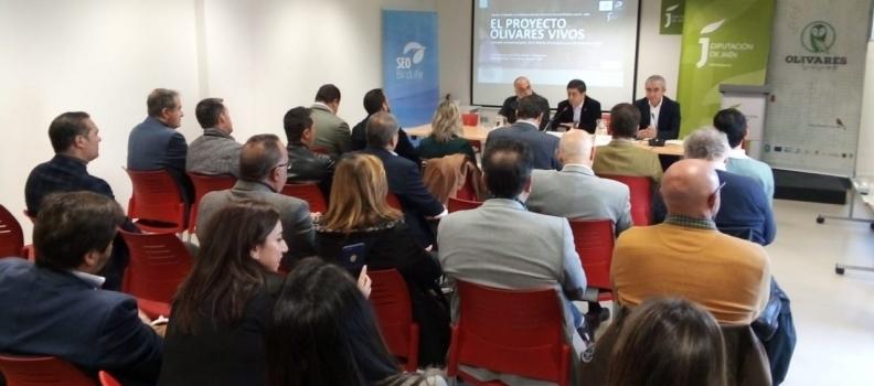 El encuentro de la Red de Municipios por los Olivares Vivos reúne a un centenar de ayuntamientos