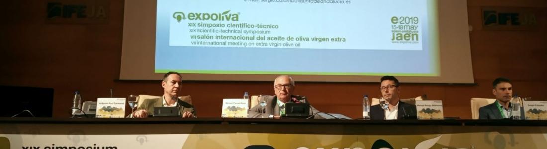 El olivar tradicional más rentable, a debate en el Foro Económico de Expoliva 2019