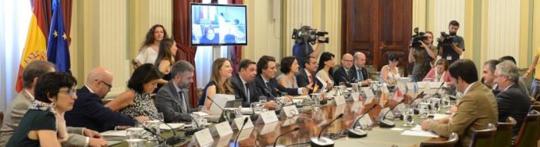 España agilizará ante la CE la posibilidad de articular el almacenamiento temporal del aceite de oliva