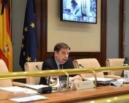 Planas aborda con las comunidades autónomas los principales asuntos del próximo Consejo de Ministros de la UE
