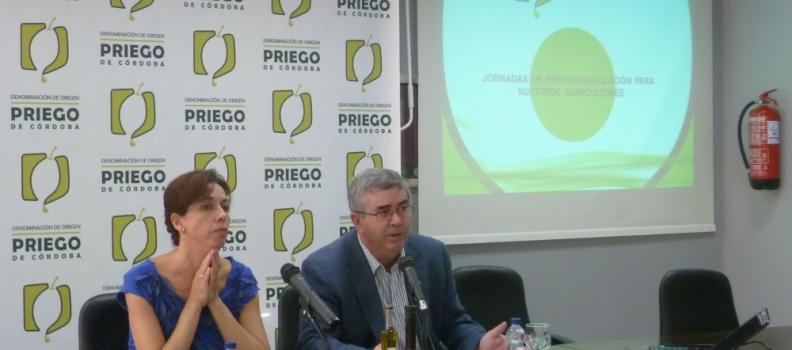 La sede de la DOP Priego de Córdoba acoge una jornada de profesionalización para agricultores