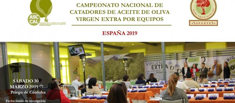 La DOP Priego de Córdoba organiza la tercera edición del Campeonato Nacional de Catadores de Aceite por Equipos