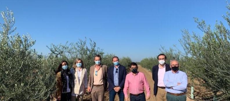 El presidente de la Diputación de Jaén visita la finca El Valenciano para conocer prácticas sostenibles e innovadoras en el olivar
