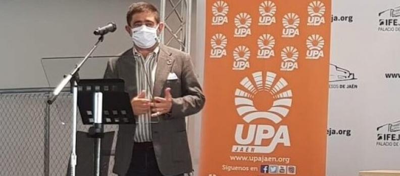 Reyes pide al Gobierno de España que permita a desempleados mantener sus prestaciones y trabajar en la aceituna