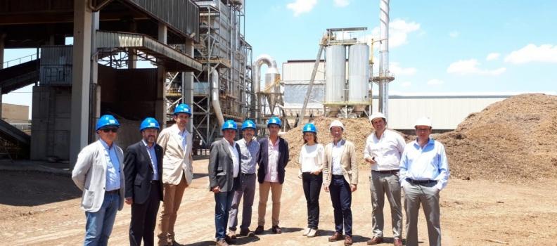 La delegada del Gobierno en Jaén conoce la actividad empresarial del grupo Sonae Arauco y Sacyr Industrial en Linares
