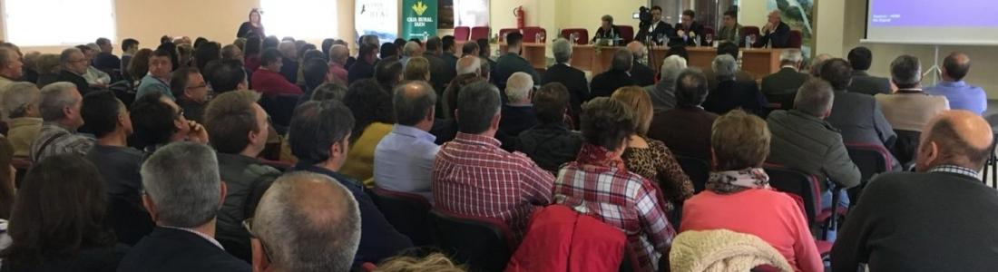 Sánchez Haro anima a la producción ecológica de aceite de oliva como estrategia para «crecer y aportar valor añadido»